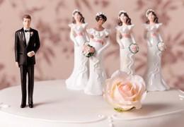 polygamy_1318313c(4)