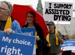 1016-euthanasia