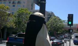 7_Woman_wearing_Niqab